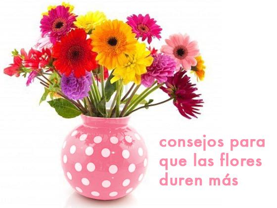 Consejos para que las flores duren más